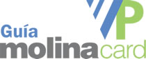 VP Molina Card Logo